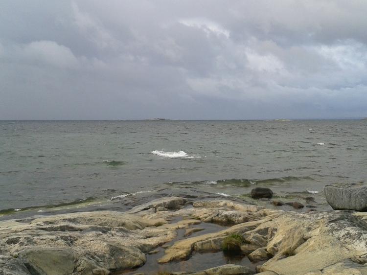 Myrskyn rippeitä saaren rannassa