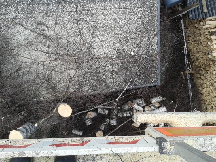 Pöllit ja oksat pudotettiin alas
